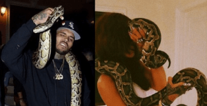 Look at what Chris Brown and Rihanna are doing (Photo)