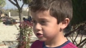 5-year-old boy saves his grandmother from house fire using lesson he learnt from school