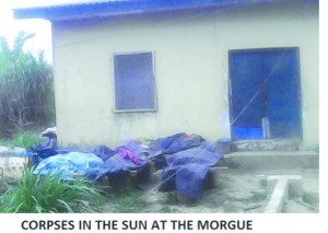 Shocking: Hospital in Delta state leaves stockpiles of corpses in the open