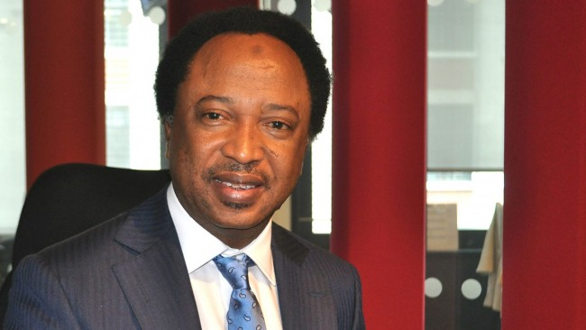 , Why Buhari hasn't ended the killings is because the victims are poor – Senator Sani Shehu, Effiezy - Top Nigerian News & Entertainment Website