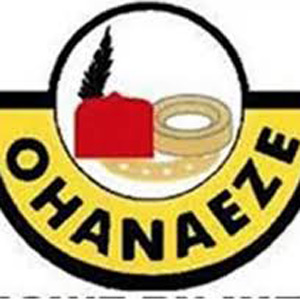 Igbos are in great danger-Ohaneze Ndigbo