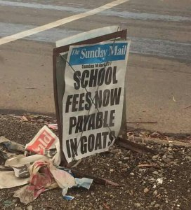 Zimbabwean Government okays payment of school fees in Goats