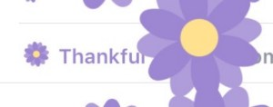 Facebook adds another feature 'Thankful'
