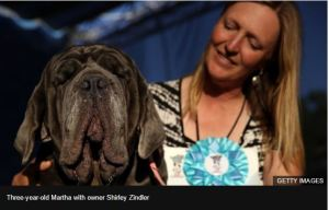 See Photos of the World's ugliest dog as it bags award in America
