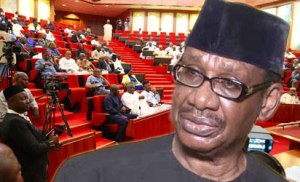 , Group urges Osinbajo to sack Sagay for non-declaration of assets, Effiezy - Top Nigerian News & Entertainment Website