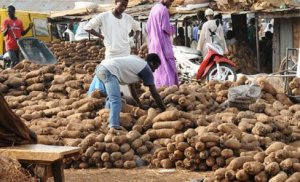 British Airways to fly Nigerian yams to UK