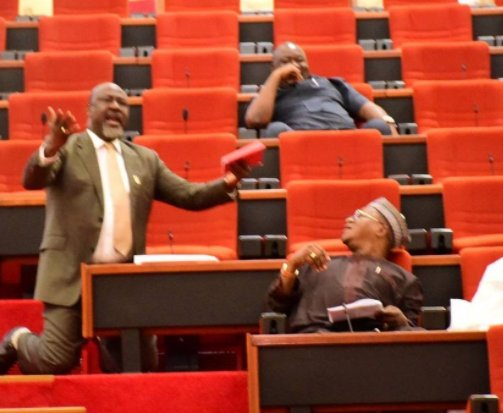 , Photo: Dino Melaye goes on his knees in the senate, begs his colleagues to save Kogi state, Effiezy - Top Nigerian News & Entertainment Website
