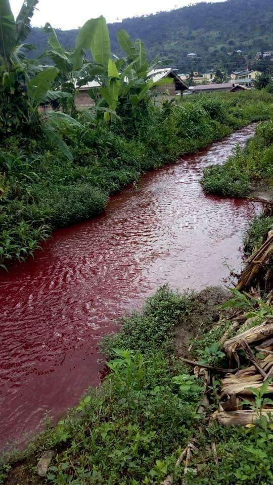 , River mysteriously turns to blood in Ghana. (Video), Effiezy - Top Nigerian News & Entertainment Website