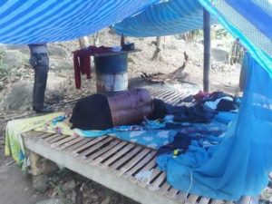 Family of 4 killed at rubber plantation (Graphic photos)