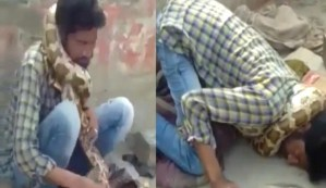 , Snake Charmer Escapes Death As Deadly Python Nearly Strangled Him (Photo), Effiezy - Top Nigerian News & Entertainment Website