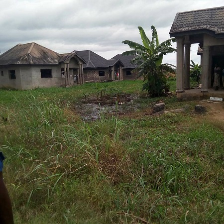 , Notorious Cultists Apprehended While Holding Meeting At Their Hideout In Bayelsa (Photos), Effiezy - Top Nigerian News & Entertainment Website