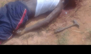 Man Beheaded In Edo State, Body Parts Including Manhood Removed. (Graphic Photos)