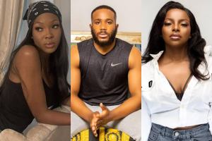 BBNaija 2020: If I was blind, I won't be attracted to Kiddwaya -Erica