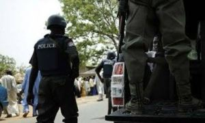 Police arrest 20 suspected rapists, paedophiles in Bauchi