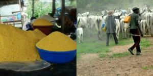 Food scarcity looms in South East over attacks on farmers by herdsmen – ASETU