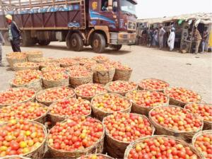 Biafra group mocks northern union for reversing ban on food to South