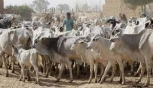 Youths resist Fulani herdsmen attack in Ebonyi State