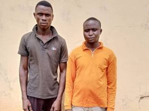 Herbalist, bricklayer kill housewife, son for money ritual in Ogun