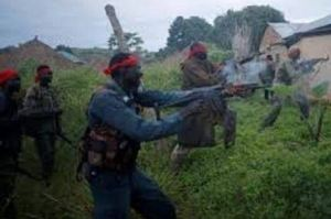 , Bloodbath in Zamfara as vigilantes storm market, execute bandits, Effiezy - Top Nigerian News & Entertainment Website