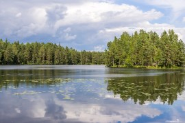 A stunning lake in the Nuuksio National Park