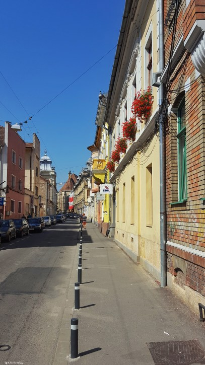 Cluj, the heart of Transylvania