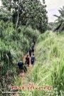 和平团契少年生活营 2018 你是谁 认识你自己 Peace Fellowship Youth Camp 2018 Who Are You Know Yourself Adventure Park River Trekking A04