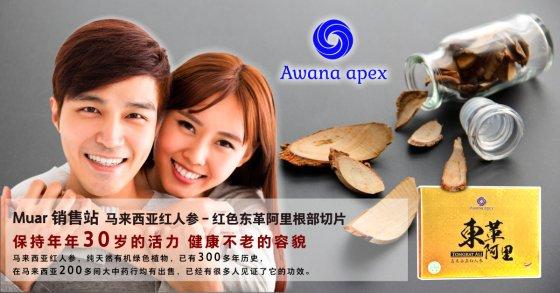 Muar 销售站 马来西亚红人参 红色东革阿里根部切片 Awana Apex 在马来西亚200多间大中药行均有出售 A01