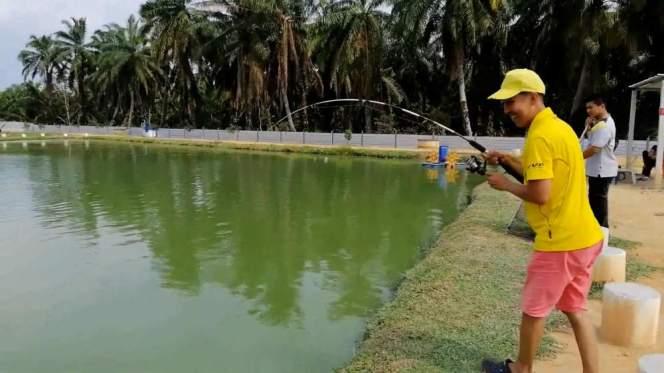 Kolam Memancing Simpang Sikon - Kolam Memancing Ikan Parit Raja Batu Pahat Johor Malaysia B10
