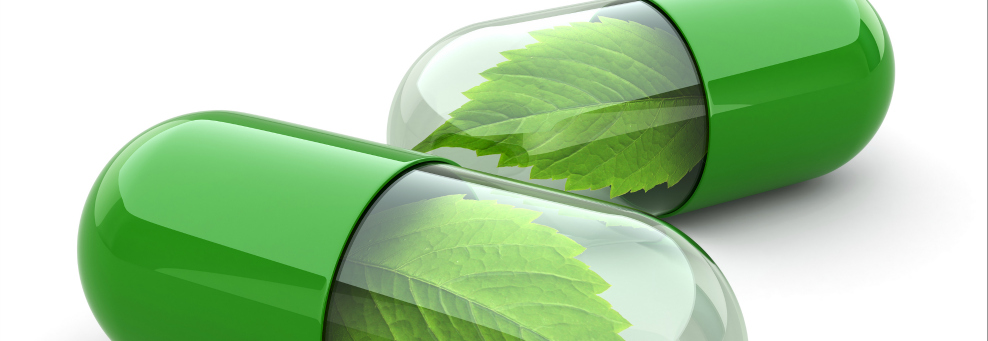 Alternatif Tıp, Bütünsel Tıp