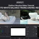 [Video Hướng dẫn] Auto White Balance trong Davinci Resolve