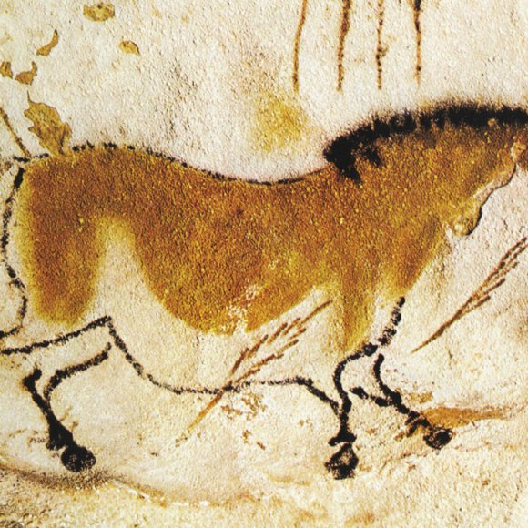Prehistory: culture and history