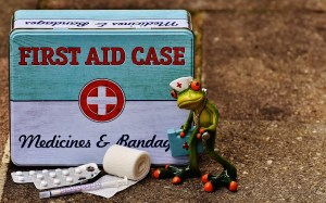 first aid, frog, medic-1732710.jpg