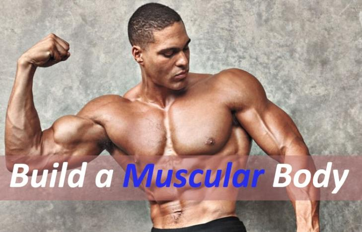 Build a muscular body