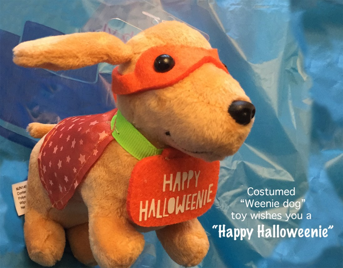 """When our son was young, we had a beloved """"weenie dog"""" so I couldn't resist buying this plush toy for him last Halloween."""