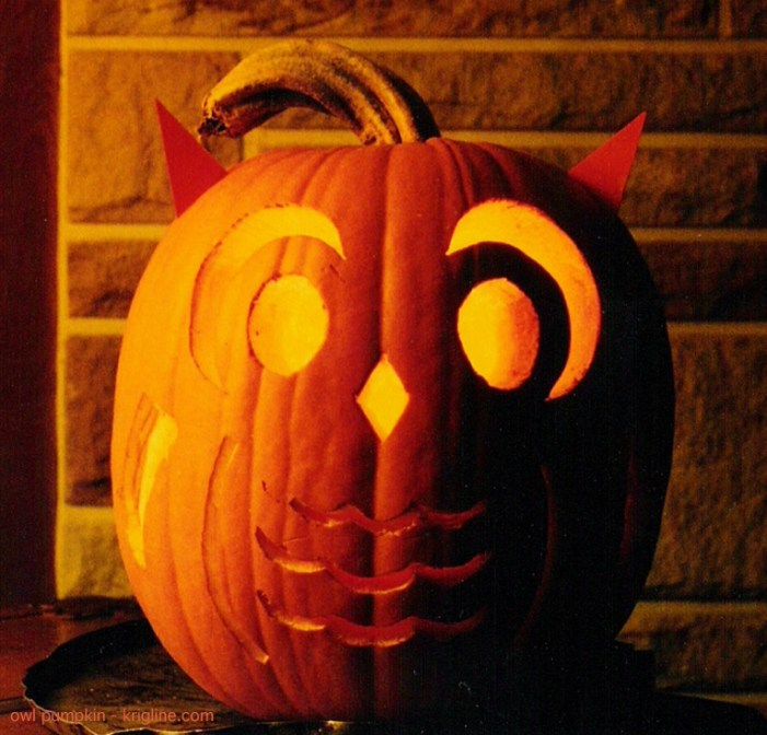 Carving this pumpkin to look like an owl was a lot of fun.