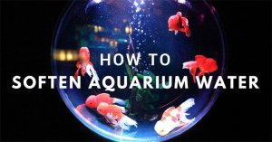 how to soften aquarium water