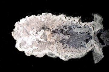 Silver Molybdate