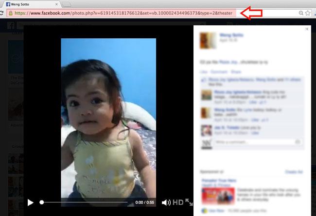 Download Facebook Videos Step 1