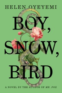 boy-snow-bird_cover