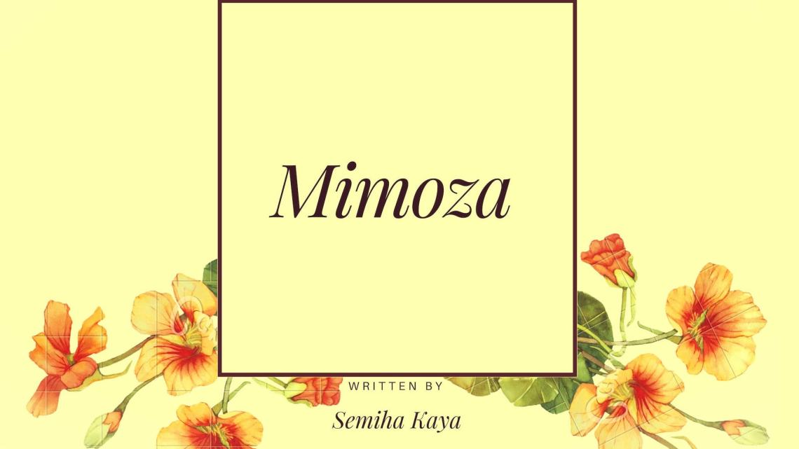 Mimoza – 4. Bölüm
