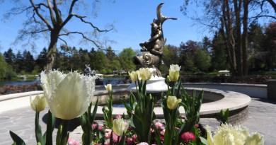 Prinses Viktória leegt zaterdag de wensbron
