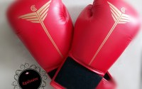 Egalimère - Gants de boxe - choisir des combats