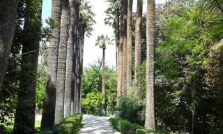 Athènes Jardin national