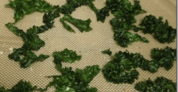 Tuesday Kahl Makes Kale Chips