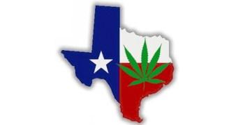 Marijuana Cannibas Texas
