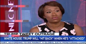Joy-Ann Reid stops MSNBC host from false narrative of who to blame for Trump win (VIDEO)