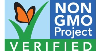 GMO Is Genetically Modified Food Really Safe For Us To Eat?