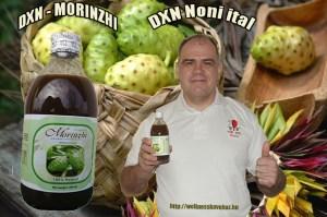 Noni DXN Morinzhi
