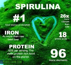 spirulina5