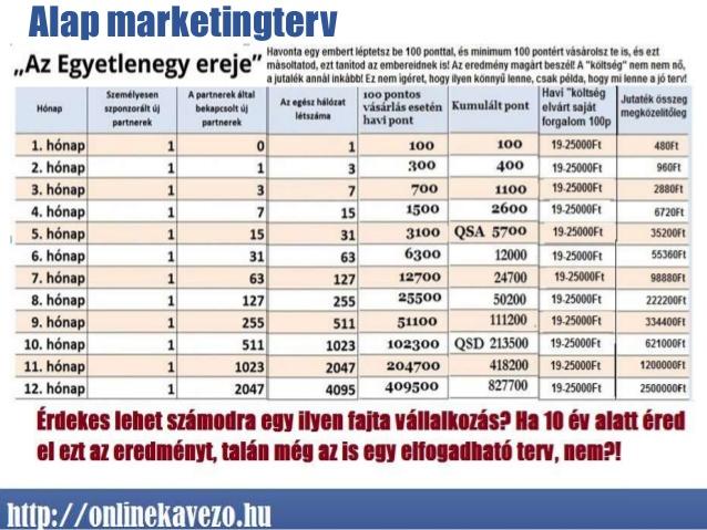 DXN marketingterv